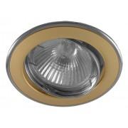DT 02 - Цвет основания/цвет стекла: PG/N (жемчужное золото/никель)